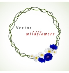 white background with chamomile and vector image