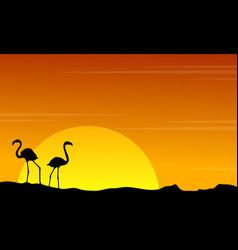 silhouette of flamingo on orange sky landscape vector image vector image