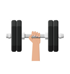 dumbbell with metal weights vector image
