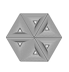 optical forming hexagon with triangles vector image
