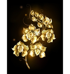 Shining golden orchid vector