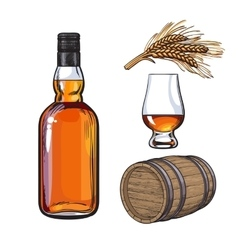 Whiskey bottle and hand holding full shot glass vector