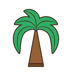 green palm beach tree vector image