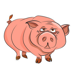 Cartoon image of huge pig vector