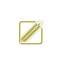 Ear of wheat farm logo bread concept sign vector