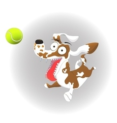 Funny dog and tennis ball on vector