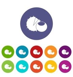 Hazelnuts set icons vector image
