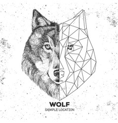 Hipster animal realistic and polygonal wolf face vector