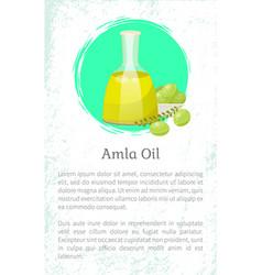 Information about amla oil in vessel gooseberries vector