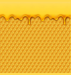 Liquid honey pattern bee honeycombs and honey vector