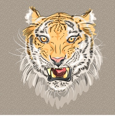 Menacing growling amur tiger vector