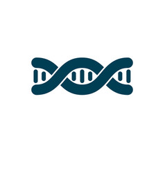 Model of human dna double helix genetic vector