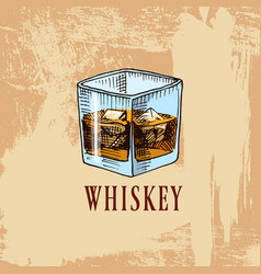 Whiskey in bar alcoholic beverage or drink vector