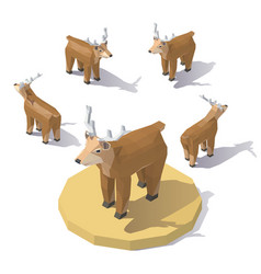 isometric low poly deer vector image vector image