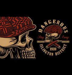 a bully skull with the straight razors vector image
