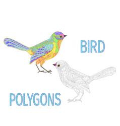 Bird rainbow polygons coloured and outline vector