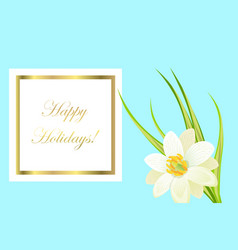 Happy holidays framed card with white narcissus vector