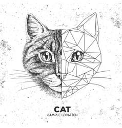 Hipster animal realistic and polygonal cat face vector