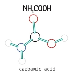 NH2COOH carbamic acid molecule vector image