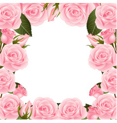 Pink rose flower frame border vector