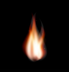 realistic fire flame bonfire with sparkles vector image