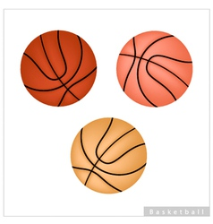 Set of Basketball Ball on White Background vector image vector image