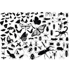 100 insects vector image vector image