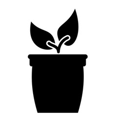 flowerpot or pot with plant icon black color flat vector image