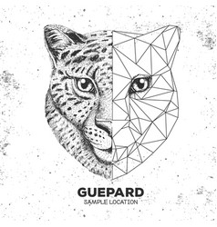 Hipster animal realistic and polygonal cheetah vector