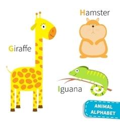 Letter G H I Giraffe Hamster Iguana Zoo alphabet vector