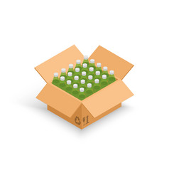 wine bottles cardboard box vector image
