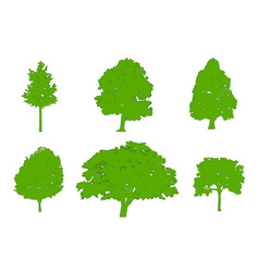 tree green silhouettes oak poplar red maple vector image