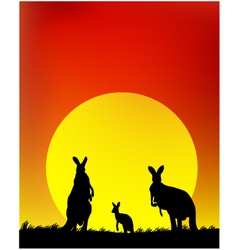 silhouette of the kangaroo family vector image