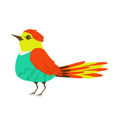 small colorful tropical bird vector image vector image