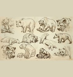 Bears - an hand drawn pack line art vector