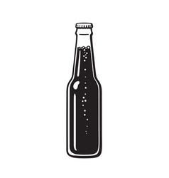 bottle of beer or soda hand drawn vector image