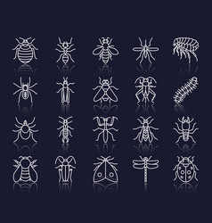 Danger insect simple white line icons set vector