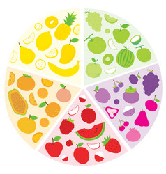 fruit circle vector image