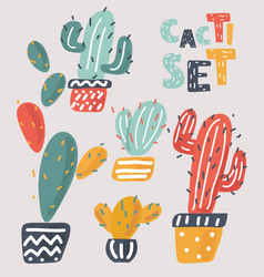 set beautiful cacti vector image