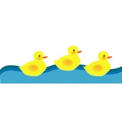 Swimming ducky vector