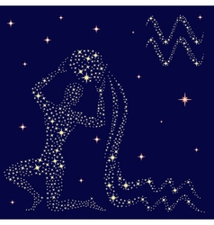 Zodiac sign Aquarius on the starry sky vector image