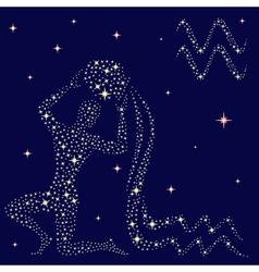 Zodiac sign aquarius on the starry sky vector