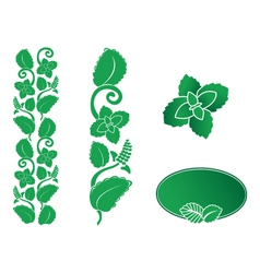 mint ornament vector image vector image