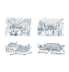 Bundle freehand drawings greenhouses full of vector