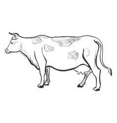 Doodle cow vector