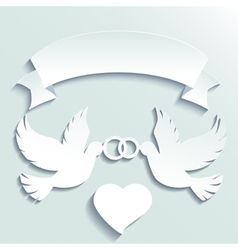 Doves holding wedding rings vector image