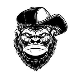 head gorilla had in baseball cap in vintage vector image