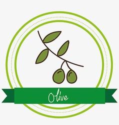Olive design vector