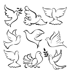 abstract dove set vector image