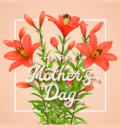 happy mothers day greeting card with red lilies vector image